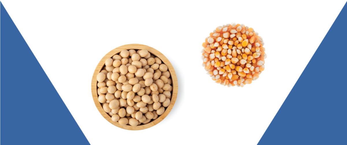 Sistema spray reduz 90% de emissão de pó no transporte de grãos