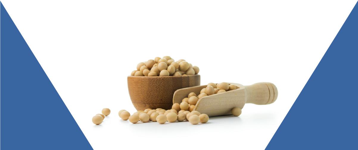Alimentícia aumenta capacidade produtiva de secagem com bicos SprayDry®
